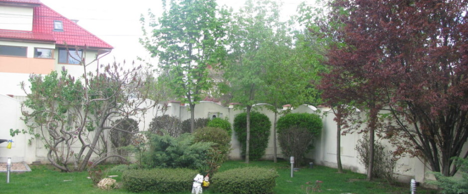 Iancu Nicolae  – Potcoavei  – vanzare vila exceptionala