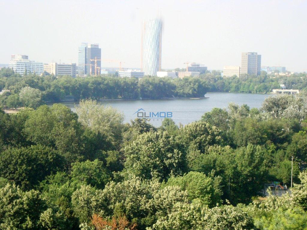 view parc floreasca